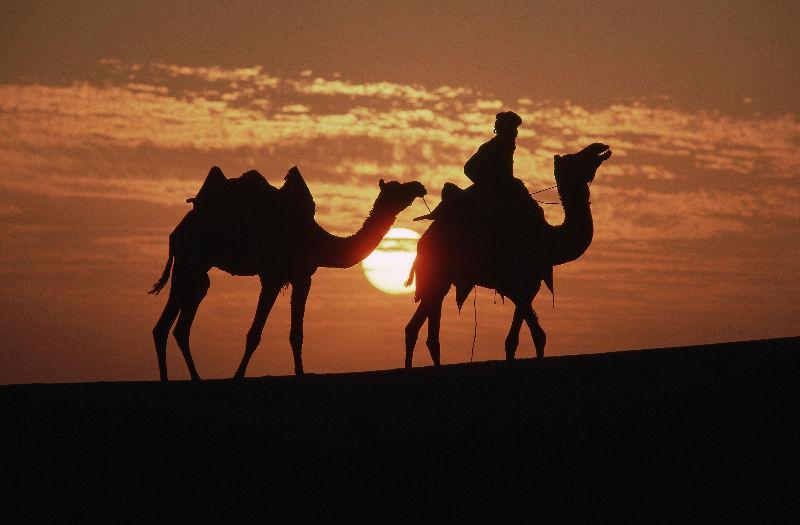 пустыня14