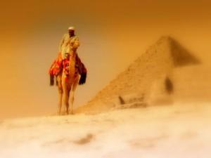 Пустыня22