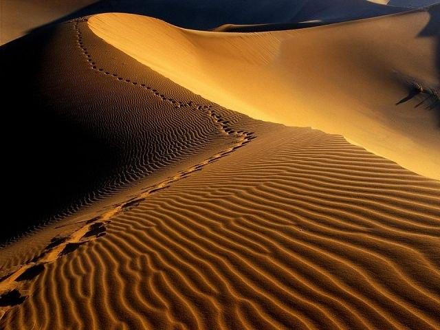 Пустыня19